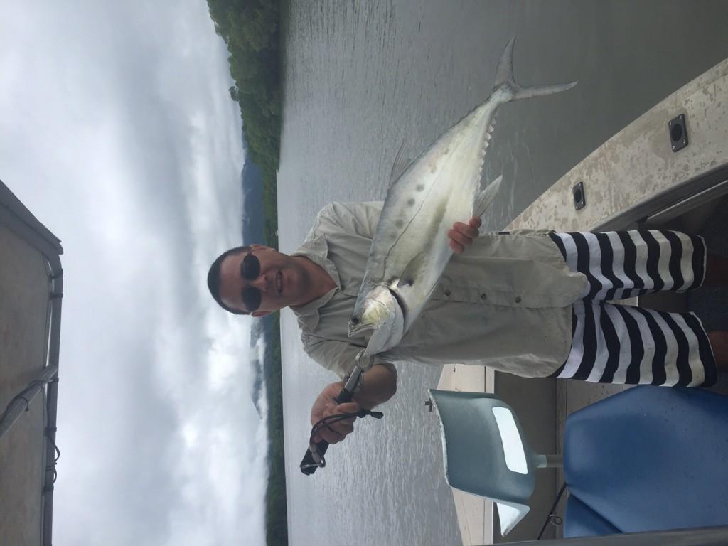 70cm Queenfish