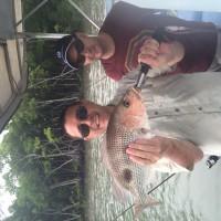 Fingermark Fish