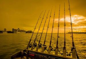 Trinity Inlet Fishing