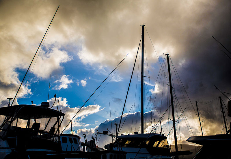 Marlin Marina Cairns